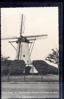 Halsteren - St Antoniusmolen - Bergen Op Zoom - Molen - 1955 - Autres