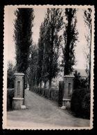 BASSEVELDE - INSTITUT ST.BERNARDUS - DREEF - Assenede