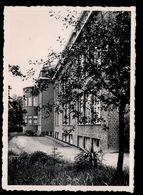 BASSEVELDE - INSTITUT ST.BERNARDUS - HOOFDGEBOUW - Assenede