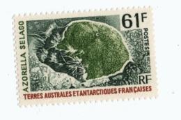 VP6L8 TAAF FSAT Antarctic Neufs**  Flore Azorella Selago 61 Francs 1974 N°52 - Terres Australes Et Antarctiques Françaises (TAAF)