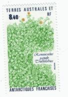 VP6L8 TAAF FSAT Antarctic Neufs**  Flore Ranunculus Pseudo  8.40 Francs 1990 N°154 - Terres Australes Et Antarctiques Françaises (TAAF)