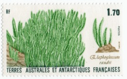 VP6L8 TAAF FSAT Antarctic Neufs**  Flore N 131 1988 Elaphoglossum 1.70 Francs - Terres Australes Et Antarctiques Françaises (TAAF)