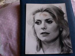 GRANDE PHOTO  24 X 17,5 // Catherine Deneuve - Célébrités