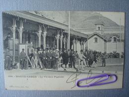 MONTE-CARLO : Le Tir Aux Pigeons En 1902 - Monte-Carlo