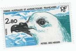 VP6L9 TAAF FSAT Neufs ** MNH Faune Petel Des Neiges N*110 1984 - Terres Australes Et Antarctiques Françaises (TAAF)