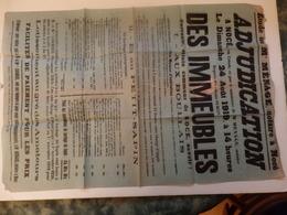 Affiche D'adjudication Des Immeubles Située à Nocé (61) En 1919. - Affiches