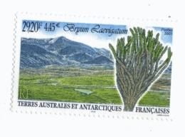 VP6L9 TAAF FSAT Neufs ** MNH Flore Bryum Laevigatum 4.45 Euros 2001 N** 293 - Terres Australes Et Antarctiques Françaises (TAAF)