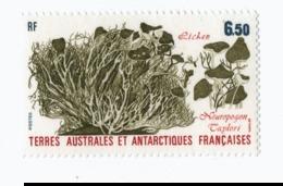 VP6L9 TAAF FSAT Neufs ** MNH Flore Algues Lichen Neuropogon N°126    6.5 Francs 1997 - Terres Australes Et Antarctiques Françaises (TAAF)