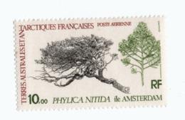 VP6L9 TAAF FSAT Neufs ** MNH Flore Phylica Nitida 10 Francs PA60  1979 - Terres Australes Et Antarctiques Françaises (TAAF)