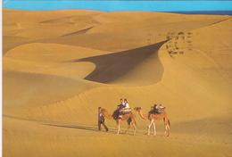 °°°  Cartolina Gran Canaria Viaggiata °°° - Spagna