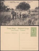 "Congo Belge - EP Vue 5C Vert - Nº50 Kitoboia "" Faucheuse Mécanique "" (DD) DC1078 - Belgian Congo - Other"