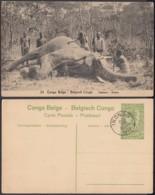 """Congo Belge - EP Vue 5C Vert -Nº53 """" Eléphant """" (DD) DC1081 - Belgian Congo - Other"""