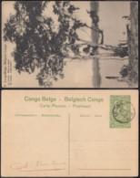 """Congo Belge - EP Vue 5C Vert  - Nº71 Le Lukula """" Arbre à Copal  """" (DD) DC1084 - Belgian Congo - Other"""