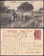 """Congo Belge - EP Vue 10C Rouge Voyagé  - Nº50 Kitobola  """"Faucheuse Mécanique"""" (DD) DC1092 - Belgian Congo - Other"""