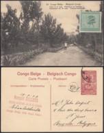 """Congo Belge - EP Vue 10C Rouge + Timbre 10C Vert Voyagé  - Nº59 Poste De La Lowa """" Plantations De Funtumia """" (DD) DC1094 - Belgian Congo - Other"""