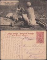 """Congo Belge - EP Vue 30C Rouge Voyagé - Nº91 """"Dépouillement D'un Lion """" (DD) DC1098 - Belgian Congo - Other"""