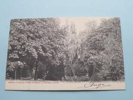 Institut Paridaens ( Filles De Marie ) Louvain - Jardin () Anno 1905 ( Zie Foto Details ) ! - Leuven