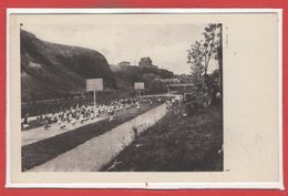 50 - DONVILLE Les BAINS -- Stade  De Culture Physique - France