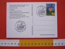 A.03 ITALIA ANNULLO - 2002 VERCELLI TRENO A VAPORE 9^ FESTA KORCZAK DEI BAMBINI - Treni