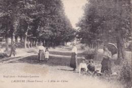 Laurière L'Allée Des Chênes Circulée En 1919 - Lauriere