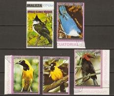 Guinée Equatoriale  - Oiseaux - Petit Lot De 5° - Rotohrbülbül - Sitta Grimpeur - Turpial - Tanagridos - Stamps