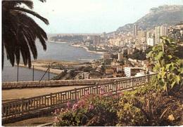 PANORAMA - Monte-Carlo