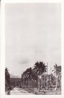 ONE OF MANYU  NEW GUINEA HIGHWAYS. GROGAN PHOTO CO. CIRCA 1940s - BLEUP - Papoea-Nieuw-Guinea