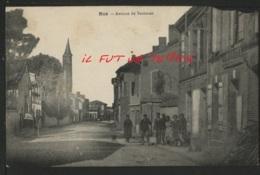 31 NOE - Avenue De Toulouse - France