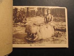 CARNET 12 CP CONGO (V1823) Mission Du KWANGO (15 Vues) Série 2 Banckaert Hippopotame - Couvin