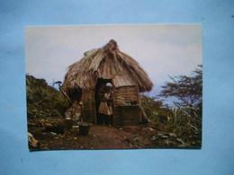 MADIAN  -  Petite Rivière De Nippes  -  HAITI  - - Postcards