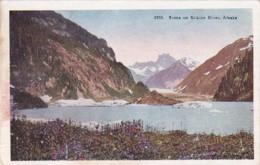 Alaska Scene On The Stikine River - United States