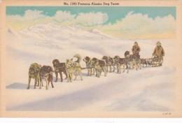 Alaska Famous Alaska Dog Team - United States