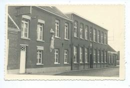Hoevenen - Stabroek