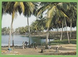 Belle CPSM ABIDJAN Bordure De Lagune VRIDI Cote D' Ivoire Animé - Ivory Coast