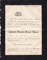 BATTICE DISON Antoinette DUBOIS épouse Nicolas HARDY 69 Ans 1886 Faire-part Mortuaire RAXHON - Décès