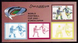 SOMALIE   BF  85  * *  ( Cote 15e ) ( Joueurs Bleus ) Cup 2002  Football  Fussball Soccer - Coupe Du Monde