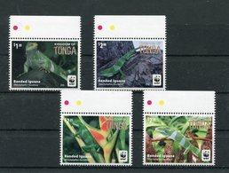 "Tonga - Mi.Nr. 2098 / 2101 Gutter Pair - ""Kurzkammleguan"" ** / MNH (aus Dem Jahr 2016) - W.W.F."