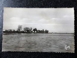 SAINTE LUCE Sur Loire La Loire à Bellevue Loire Inférieure Atlantique 44 - Francia