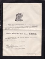 BINCHE Marguerite WANDERPEPEN 21 Ans 1878 Fille Du Bourgmestre Famille De ROBAULX Faire-part Mortuaire - Décès