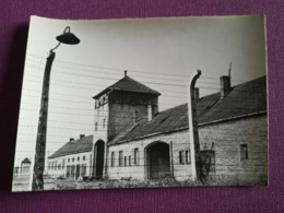 POLOGNE - AUSCHWITZ - OSWIECIM - LA PORTE D'ENTREE DE BRZEZINKA - CPSM CARTE PHOTO VIERGE - Pologne