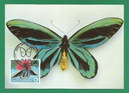 Papua-Neuguinea 1988  Mi.Nr. 577, Queen Alexandra`s Birdwing Butterfly - WWF Maximum Karte - First Day  19.9.1988 - Papouasie-Nouvelle-Guinée
