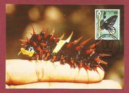 Papua-Neuguinea 1988  Mi.Nr. 575 , Queen Alexandra`s Birdwing Butterfly - WWF Maximum Karte - First Day  19.9.1988 - Papouasie-Nouvelle-Guinée