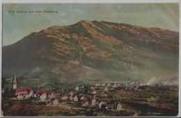 Arth Goldau Mit Dem Rossberg - SZ Schwyz