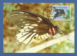 Papua-Neuguinea 1988  Mi.Nr. 574 , Queen Alexandra`s Birdwing Butterfly - WWF Maximum Karte - First Day  19.9.1988 - Papouasie-Nouvelle-Guinée