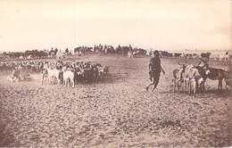 Afrique MALI Puits De TABERICHAT Puits De TABERICHAT Paysans Chèvre Anes ... ETAT = Voir Description - Mali