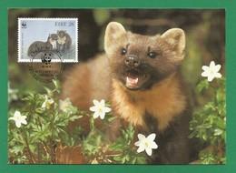 Irland 1992   Mi.Nr. 798 , Pine Marten - WWF Maximum Karte - First Day  9.VII.1992 - Cartoline Maximum
