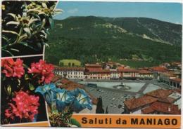Saluti Da Maniago (Pordenone). Viaggiata 1977 - Pordenone