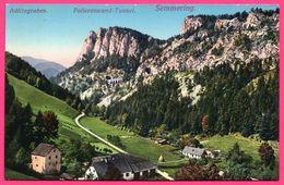 Semmering - Adlitzgraben - Polleroswand Tunnel - Montagne - P. LEDERMANN - Colorisée - Semmering