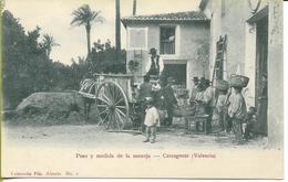 Peso Y Medida De La Naranja  CARCAGENTE  (Valencia)( Pesée Et Mesure De La VENDANGE) - Vines
