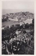 Carte Postale : Raguse Dubrovnik  (Croatie) Vue Sur Le Port  Et L'Adriatique    Rare - Croatie